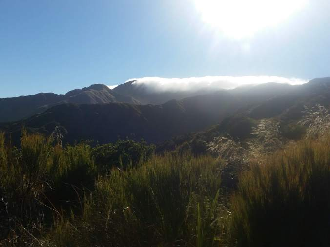 Days 90-92 of #WalkNZ: The Tararua mountain range | Katrina Megget